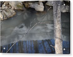 Reflections Acrylic Print by Vinci Photo
