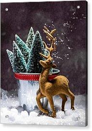 Reindeer At Christmas Acrylic Print by Amanda And Christopher Elwell