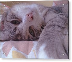 Relax Acrylic Print by Lucy D