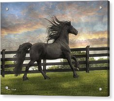 Remains Of The Day Acrylic Print by Fran J Scott