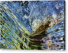 Resistance Is Futile Acrylic Print by Gary Holmes