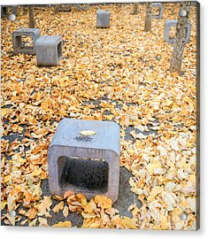 rest in fall IV Acrylic Print by Hannes Cmarits