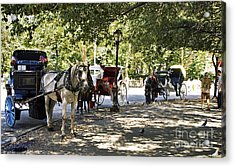 Rest Stop - Central Park Acrylic Print by Madeline Ellis