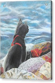 Resting By The Shore Acrylic Print by Jeanne Fischer