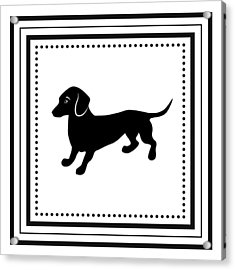 Retro Dachshund Acrylic Print by Antique Images