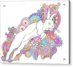 Retro Rabbit 2 Acrylic Print by Cherie Sexsmith