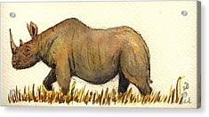 Rhino Acrylic Print by Juan  Bosco