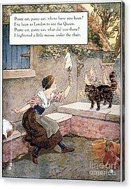 Richardson: Pussy Cat Acrylic Print by Granger