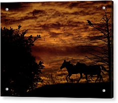Riding Into The Night Acrylic Print by Diane Schuster