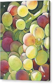 Ripening Acrylic Print by Sandy Haight