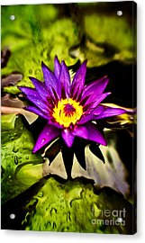 Rise And Shine Acrylic Print by Scott Pellegrin