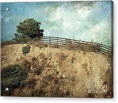 Rising Above Acrylic Print by Ellen Cotton