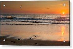 Rising Sun Acrylic Print by Bill Wakeley