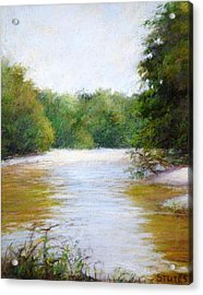River And Trees Acrylic Print by Nancy Stutes
