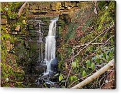 River Roddlesworth Waterfall. Acrylic Print by Daniel Kay