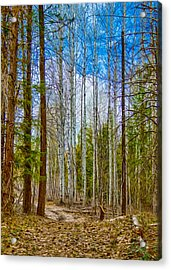 River Run Trail At Arrowleaf Acrylic Print by Omaste Witkowski