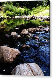 Riversong Acrylic Print by Lucy D
