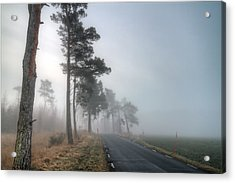 Road In Mist Acrylic Print by EXparte SE
