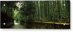 Road Passing Through A Bamboo Forest Acrylic Print by Panoramic Images