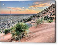 Road To Mexico Acrylic Print by JC Findley