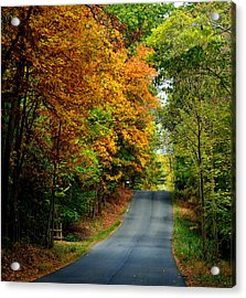 Road To Riches Acrylic Print by Carlee Ojeda