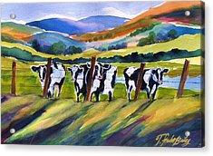 Roadside Cows Near San Luis Acrylic Print by Therese Fowler-Bailey