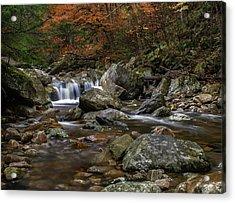 Roaring Brook - Sunderland Vermont Autumn Scene  Acrylic Print by Thomas Schoeller