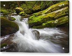 Roaring Fork Great Smoky Mountains National Park Cascade - Gatlinburg Tn Acrylic Print by Dave Allen