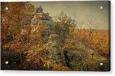 Rock Formation Acrylic Print by Sandy Keeton