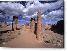 Rock Sentinels In Talampaya National Park Acrylic Print by James Brunker