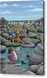 Rockpooling Acrylic Print by Peter Adderley