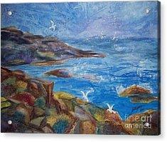 Rocky Shores Of Maine Acrylic Print by Ellen Levinson