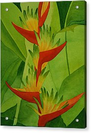 Rojo Sobre Verde Acrylic Print by Diane Cutter