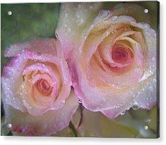 Romance 1 Acrylic Print by Shirley Sirois