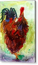 Roosta  Acrylic Print by Anderson R Moore