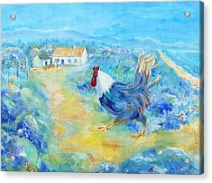 Rooster On Dingle Peninsula  Acrylic Print by Trudi Doyle