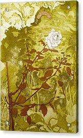 Rose Acrylic Print by Valerie Daniel