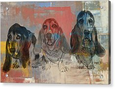 Row Of Basset Hounds Acrylic Print by Michelle Wolff