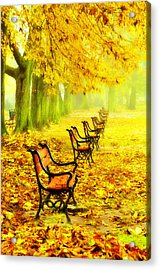 Row Of Red Benches In The Park Acrylic Print by Jaroslaw Grudzinski