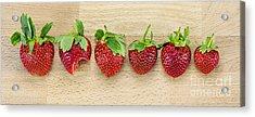 Row Of Strawberries  Acrylic Print by Svetlana Sewell
