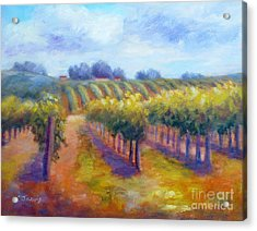 Rows Of Vines Acrylic Print by Carolyn Jarvis