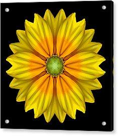 Rudbeckia Prairie Sun I Flower Mandala Acrylic Print by David J Bookbinder