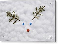 Rudolf Loves Ya Acrylic Print by Tim Gainey
