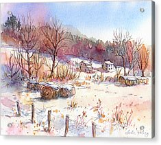 Ruff Creek Winter Acrylic Print by Leslie Fehling