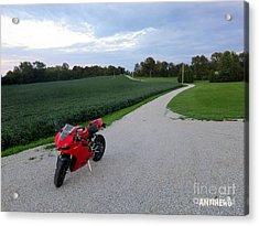 Rural Road In Indiana Acrylic Print by AntiHero