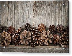 Rustic Wood With Pine Cones Acrylic Print by Elena Elisseeva