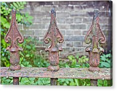 Rusty Fence Spikes Acrylic Print by Tom Gowanlock