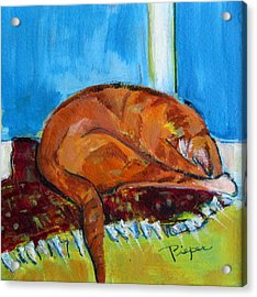 Rusty Hiding His Head Acrylic Print by Betty Pieper