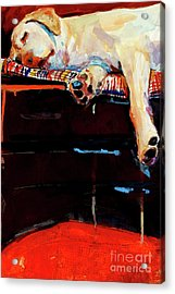 Sacked Acrylic Print by Molly Poole