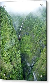 Sacred Falls - Hawaii Acrylic Print by Sean Davey
